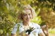 A mature woman pruning a bush