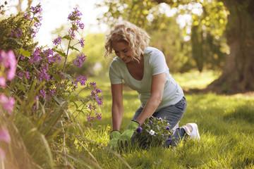 A mature woman gardening