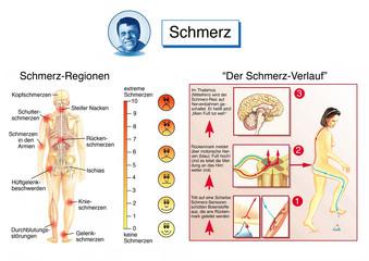 Schmerz-Verlauf.Dauerschmerzen
