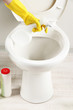 Woman hand with spray bottle cleaning a toilet bowl in a