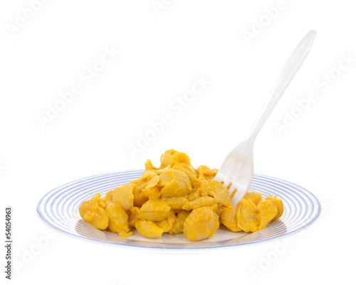 Cheese pasta shells on plate with fork