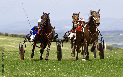 Trotting Race Synod Inn Cardigan Wales