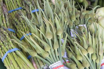 Garlic Spears and Asparagus Bundles Closeup