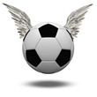 Soccer Ball with Wings Isolated on White