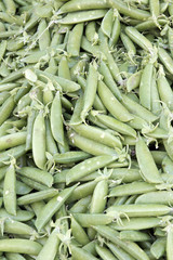 Pile of Sugar Peas Background