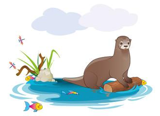 Otter/Fischotter
