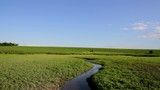 River Flowing through Green Grass Field Nature Ecology