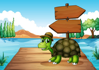 A turtle near the wooden arrowboard