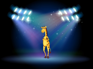 A giraffe standing in the middle of the stage