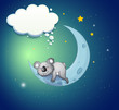A koala bear above the moon