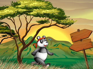 A panda following the wooden arrowboard