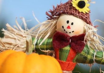 Cute scarecrow and pumpkins on blue sky background.