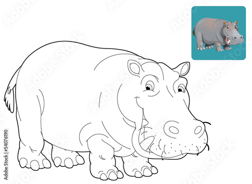 Cartoon safari - coloring page - illustration for the children