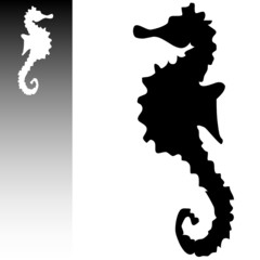 sea horse art vector illustration on a white