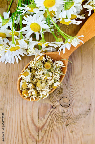 Herbal tea from chamomile dry and fresh on the spoon