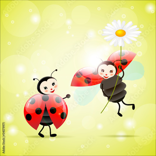 Fotobehang Lieveheersbeestjes two ladybugs with a daisy