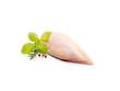 rohe Hühnerbrust mit Haut, Basilikum und Pfefferkörnern