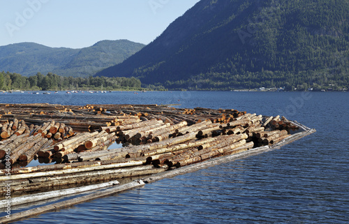 Leinwanddruck Bild Holzwirtschaft