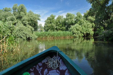 Travelling with a boat on a water channel in the Danube delta