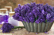 Bouquet of purple lavenders and spa products