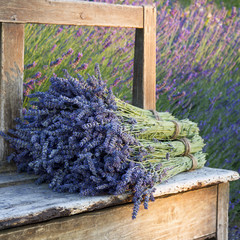 Bouquets on lavenders on a old bench