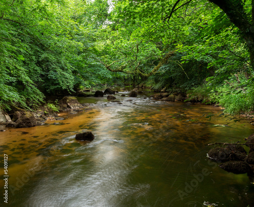 River Teign Dartmoor Devon Uk