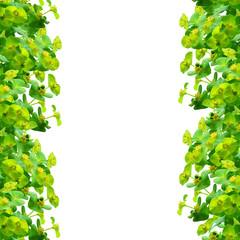 Frame of green plants