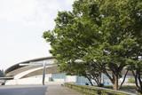 東京体育館  Tokyo Metropolitan Gymnasium poster