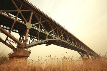 Reed the foreground and steel bridge  in nanjing jiangsu