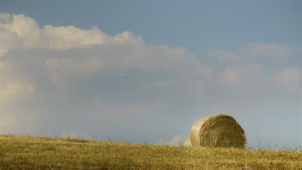 Rural summer field with bale of hay