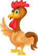 Rooster cartoon waving