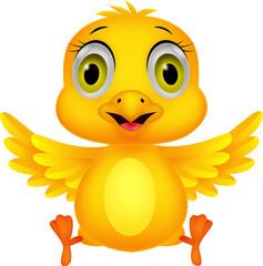 Cute baby chicken cartoon