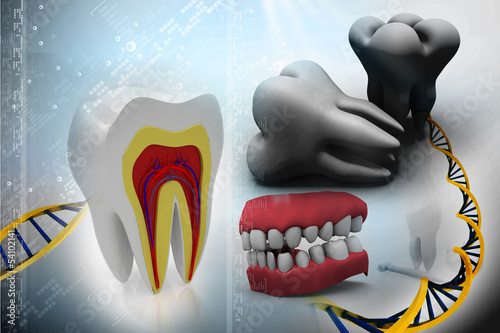 cross section of teeth, toot and DNA  on abstract background