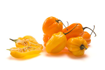 Habanero Peppers Orange