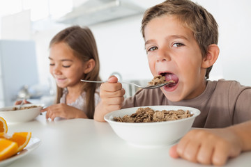 Boy eating cereal while having breakfast