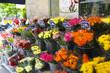 パリのお花屋さん  イメージ