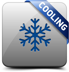 Cooling button