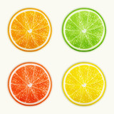 Set of citrus fruits. Orange, Lime, Grapefruit, Lemon.