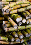 close up photo of a stack of sugar cane sticks