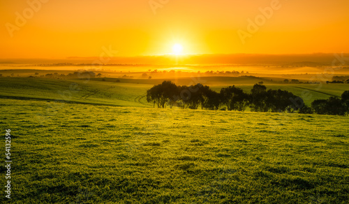 Sunrise Field