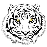 Tiger Face, Vector