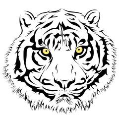 Tiger Face, Vector