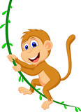 Cute monkey cartoon swinging