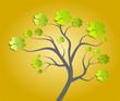 Baum Kleeblatt