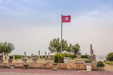 ancient ruins of Carthage, Tunisia