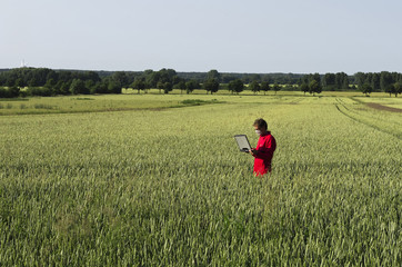 Wissenschaftler im Getreidefeld