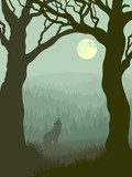 Fototapety Square illustration of wolf howling at moon.