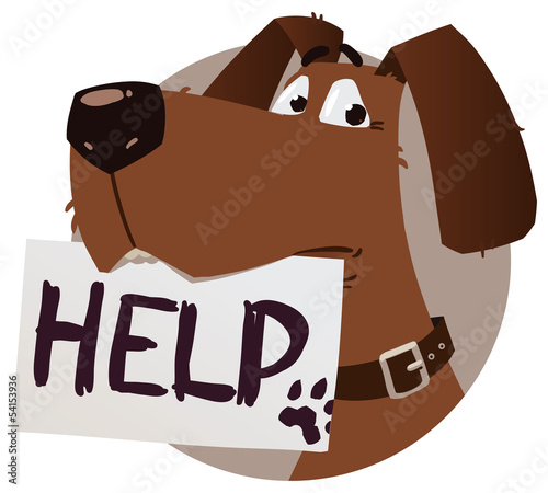 dog with help sign