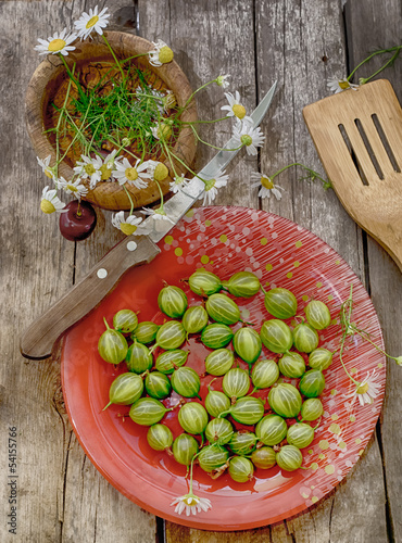 Fresh garden-stuffs of gooseberry