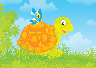 tortoise walking with a small butterfly